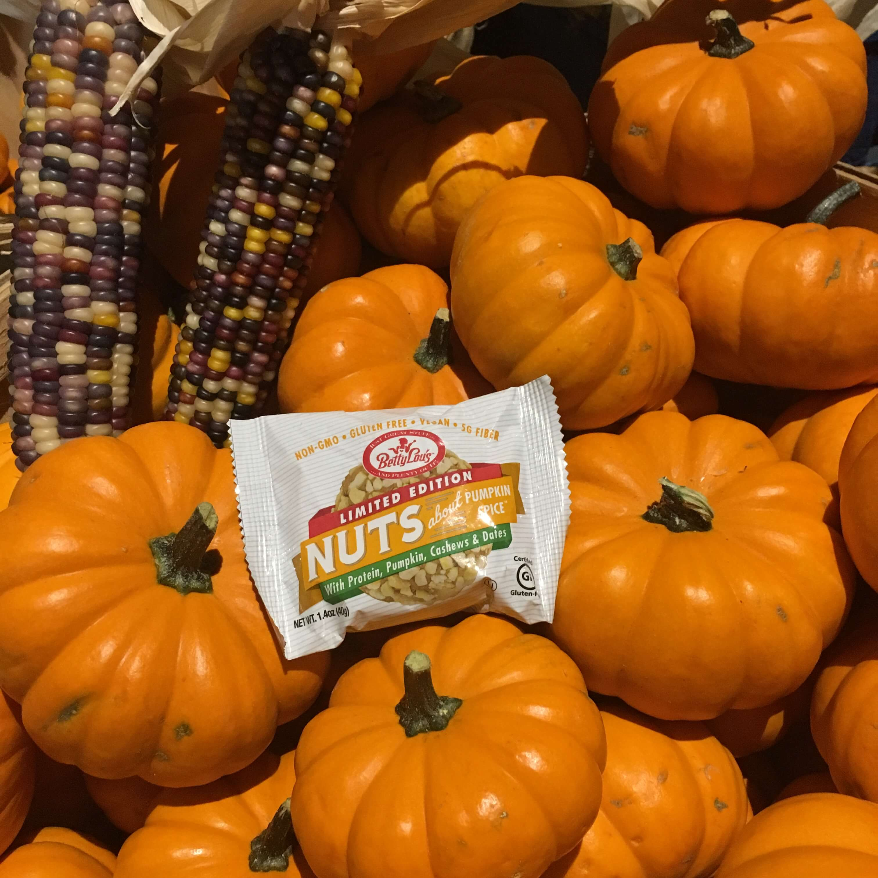 Betty Lou's Pumpkin Spice Nut Butter Balls
