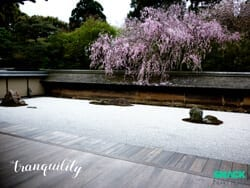 tranquility-poster-small