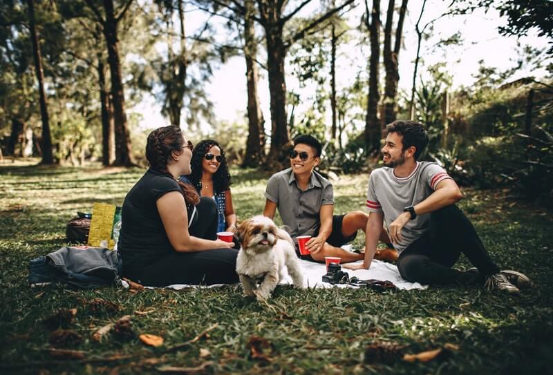 picnic-snack-ideas